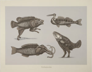 B. Lyons creatures