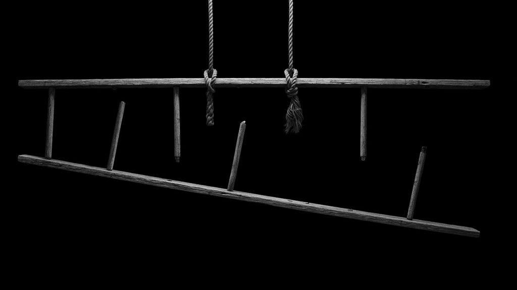 Ladder, 2013
